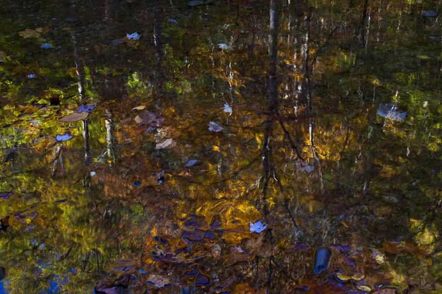 Smoky Mountains Photograph - Autumnal Reflection by Jim Neumann