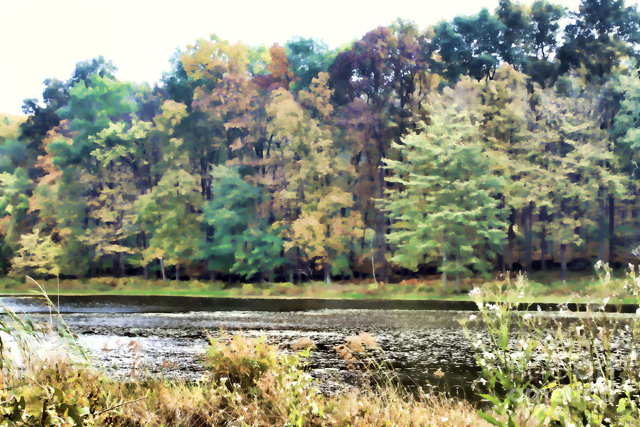 Fall Photograph - Autumns Brush At The Red Ant Fort by Christine Segalas