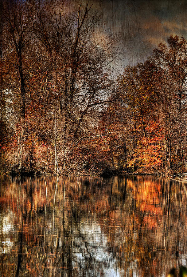 Season Photograph - Autumns End by Paul Ward