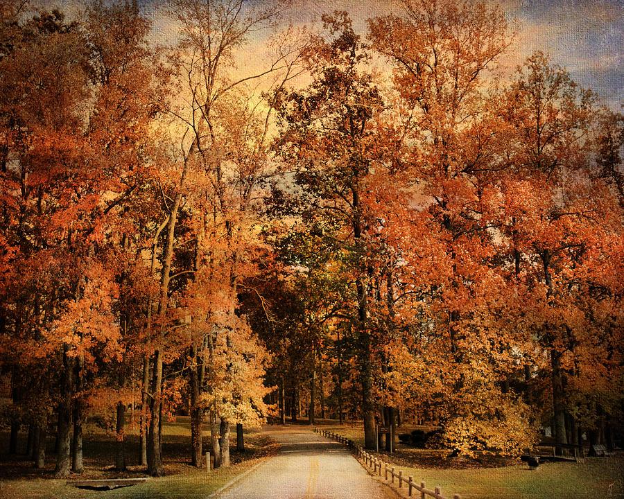 Autumn Photograph - Autumns Entrance by Jai Johnson