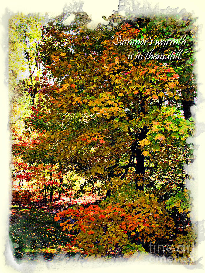 Summer's Warmth Photograph - Autumns Warmth Inspiration Quote by Joan  Minchak