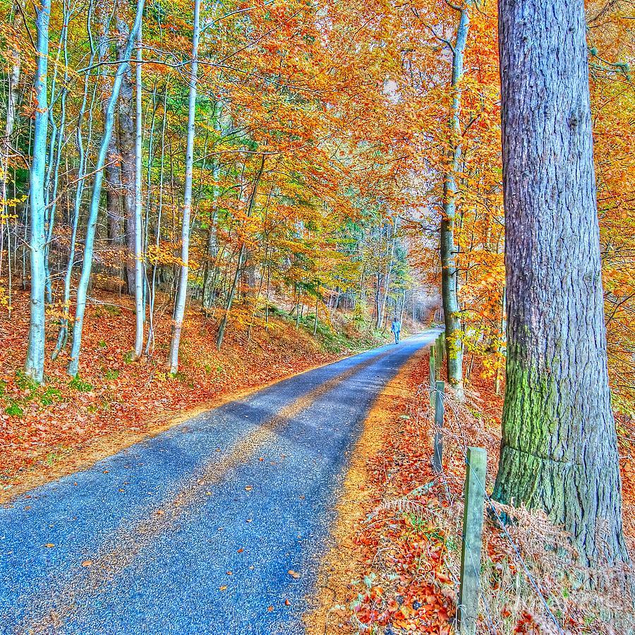 Colourful Photograph - Autumns Way Bleu  by John Kelly