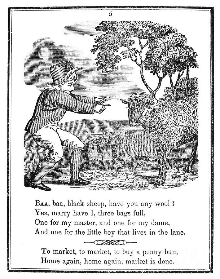 1833 Photograph - Baa, Baa, Black Sheep, 1833 by Granger