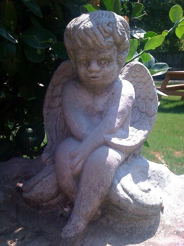 Cherub Photograph - Baby Angel by Rebecca Poole
