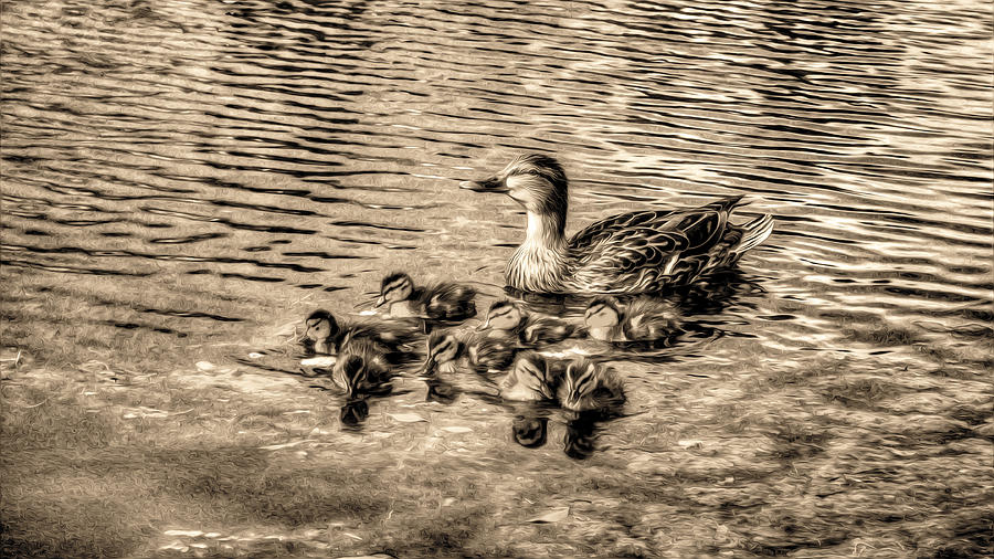 Landscape Digital Art - Baby Ducks - Sepia by Sergio Aguayo