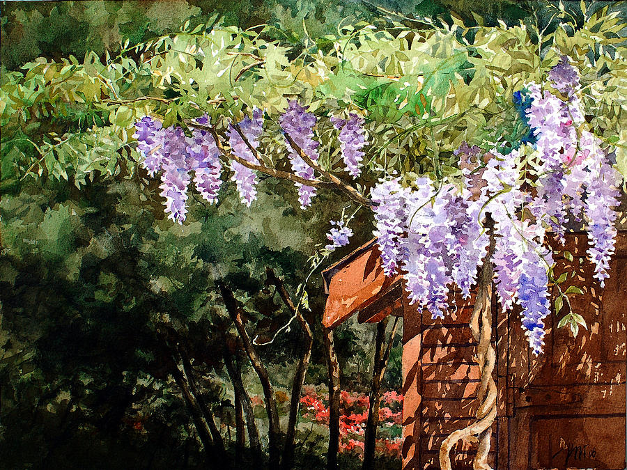 Garden Painting - Backyard Wisteria by Peter Sit