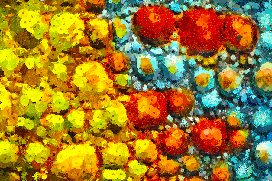 Orb Mixed Media - Bacteria 2 by Angelina Vick