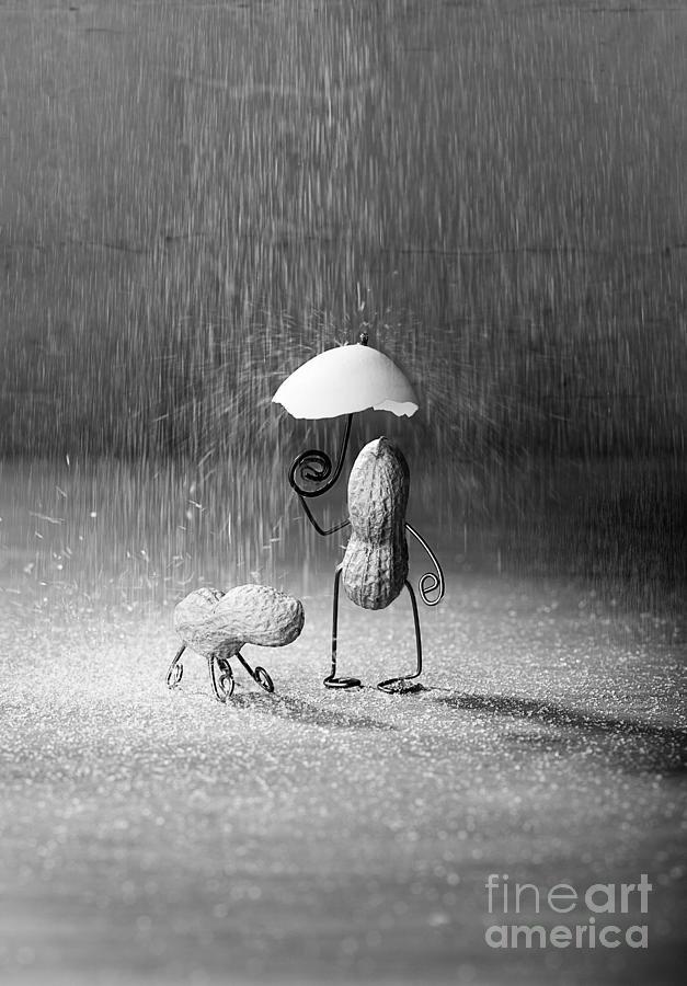 Peanut Photograph - Bad Weather 01 by Nailia Schwarz