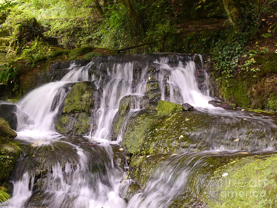 Waterfall Photograph - Badger Dingle by John Chatterley