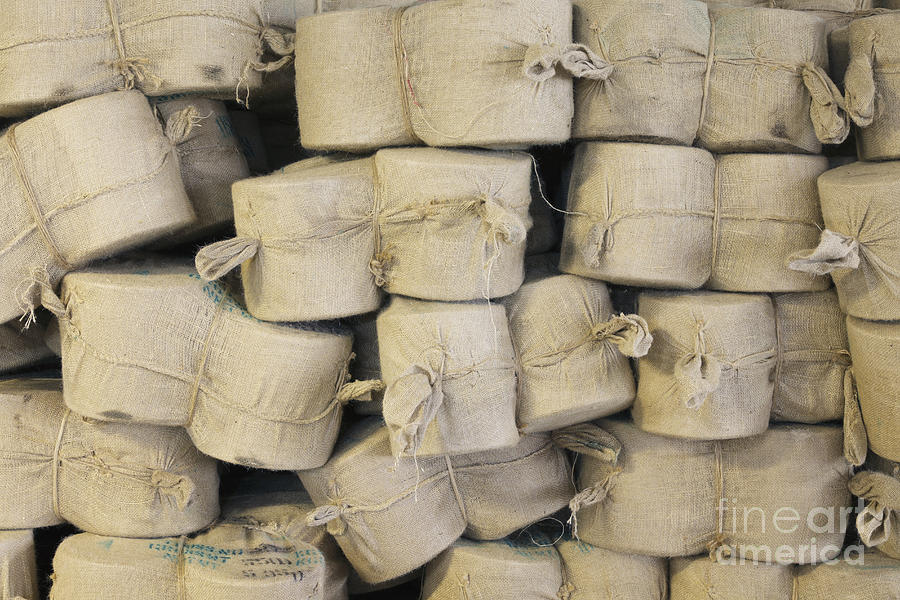 Bags Photograph - Bags Of Flax by Magomed Magomedagaev