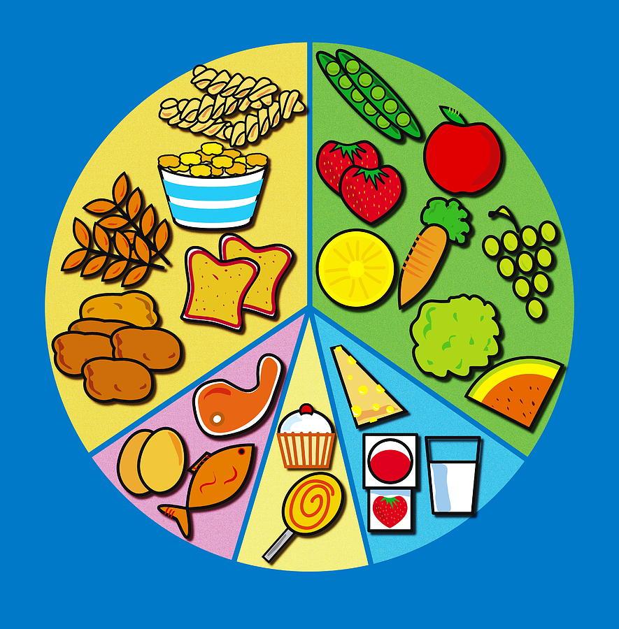 Balanced diet photograph by david nicholls nutrition photograph balanced diet by david nicholls nvjuhfo Gallery