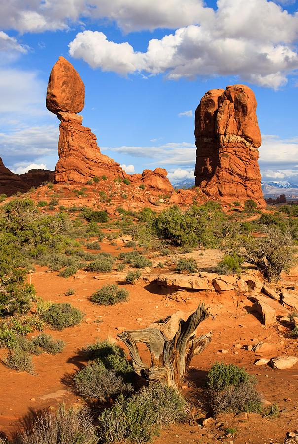 Balanced Rock Photograph - Balanced Rock by Adam Pender