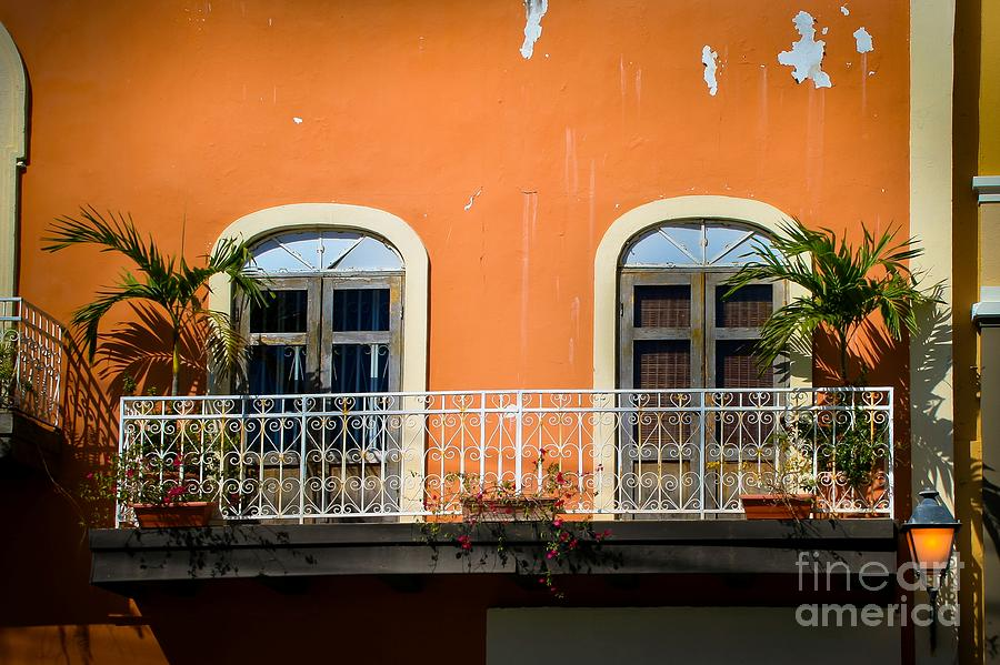 Window Photograph - Balcony With Palms by Perry Webster
