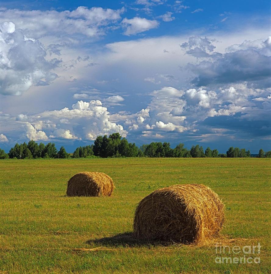 Bales Of Hay Photograph by Elena Filatova