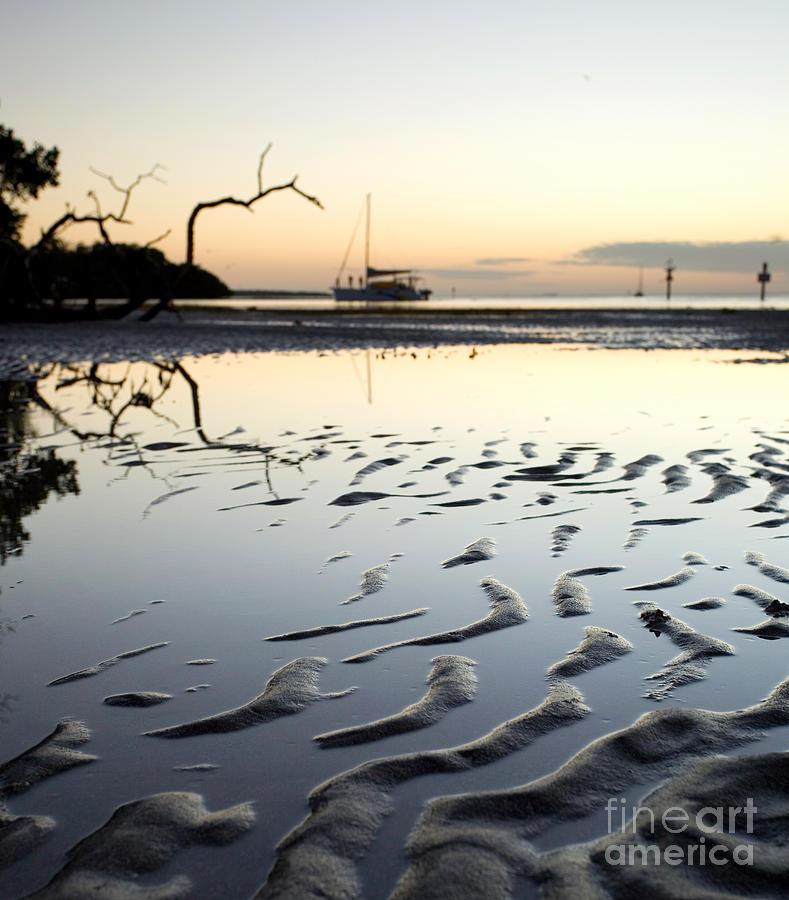 Florida Photograph - Balmy Florida Evening by Matt Tilghman