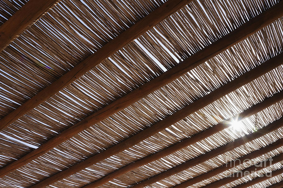 Architecture Photograph   Bamboo Roof By Jeremy Woodhouse