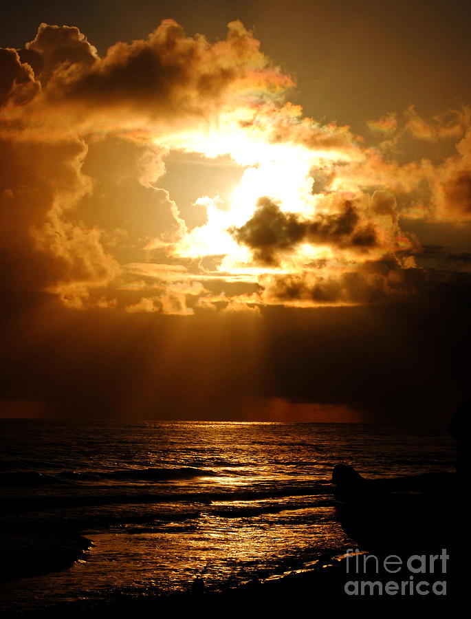 Barbadose Sunrise Photograph by Lenroy Johnson