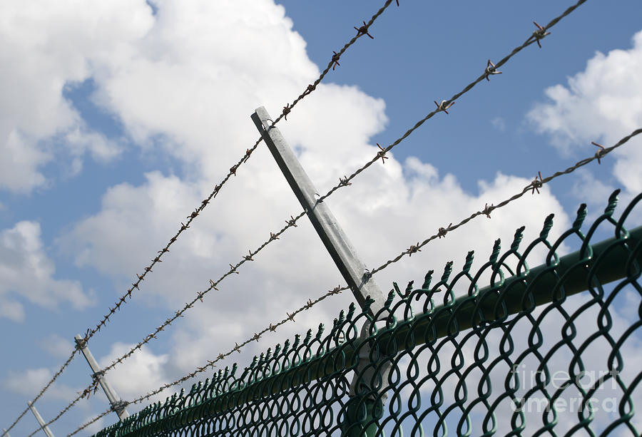Barb Photograph - Barbed Wire by Blink Images