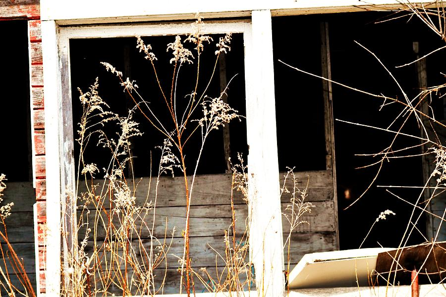 Barn Photograph - Barn-18 by Todd Sherlock