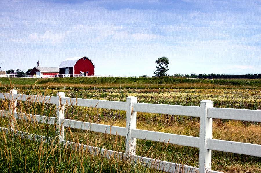 Barn Photograph - Barn And Fence by Cheryl Cencich