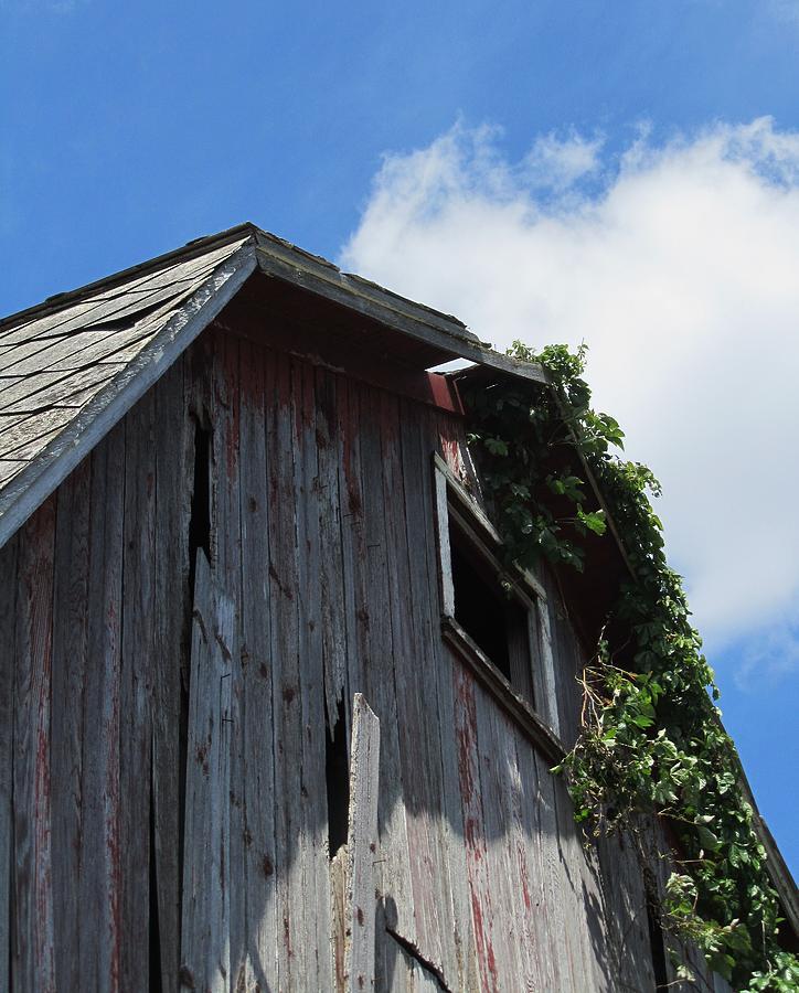 Old Barn Photograph - Barn-nine by Todd Sherlock