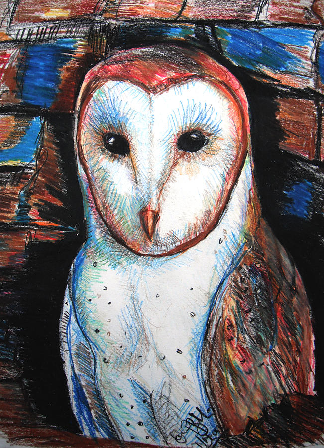 Barn Drawing - Barn Owl  by Jon Baldwin  Art