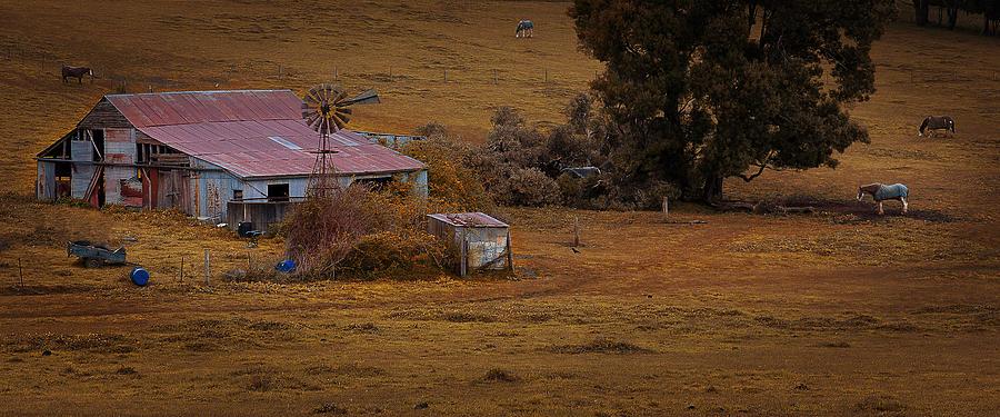 Tim Nichols Photograph - Barn Yard by Tim Nichols