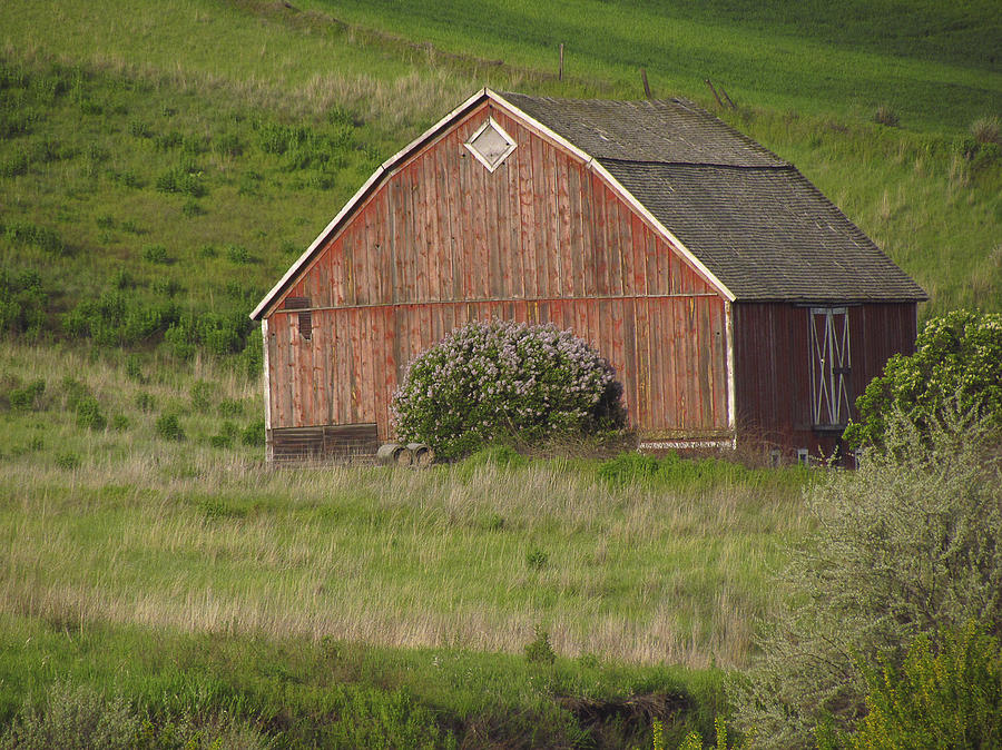 Red Photograph - Barns Of The Palouse 6 by Tony and Kristi Middleton
