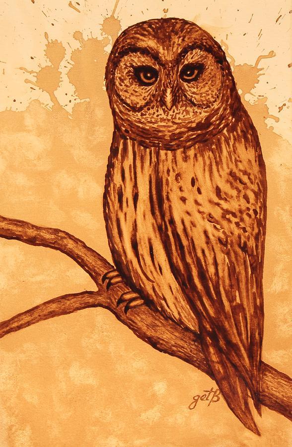 Barred Owl Coffee Painting Painting by Georgeta  Blanaru