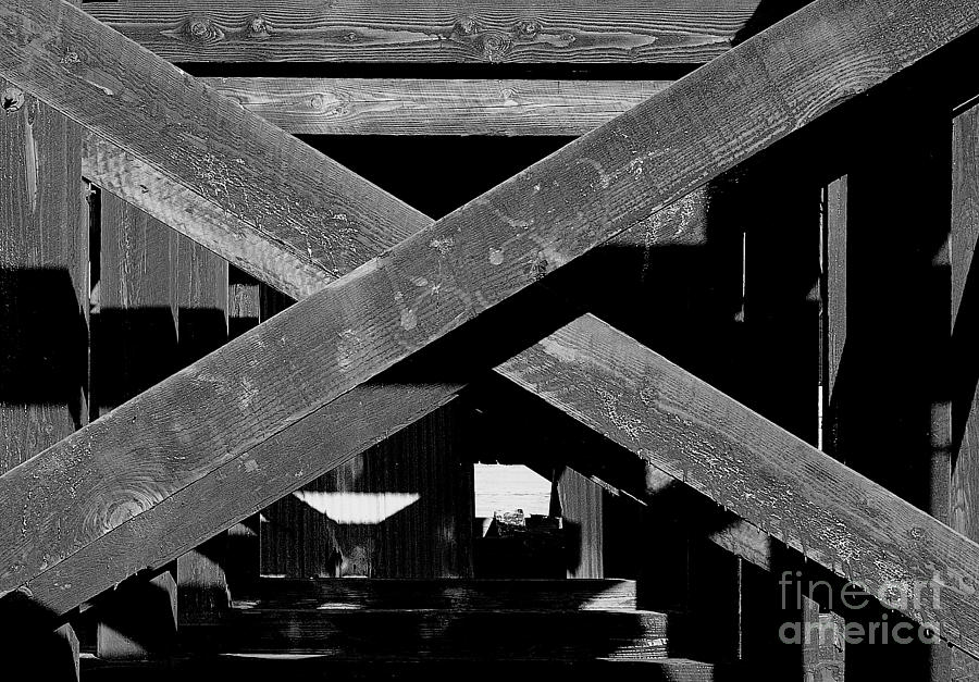 Black And White Photograph - Barrier Wood by Michael Wyatt