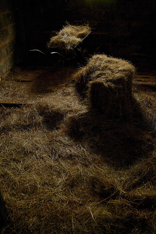 Farm Life Photograph - Barrow And Hay by Miguel Capelo