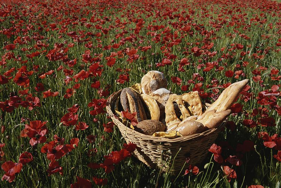 Europe Photograph - Basket Of Bread In A Poppy Field by Nicole Duplaix
