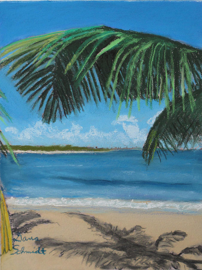 Bay Painting - Bay Beach Across From San Juan Puerto Rico by Dana Schmidt