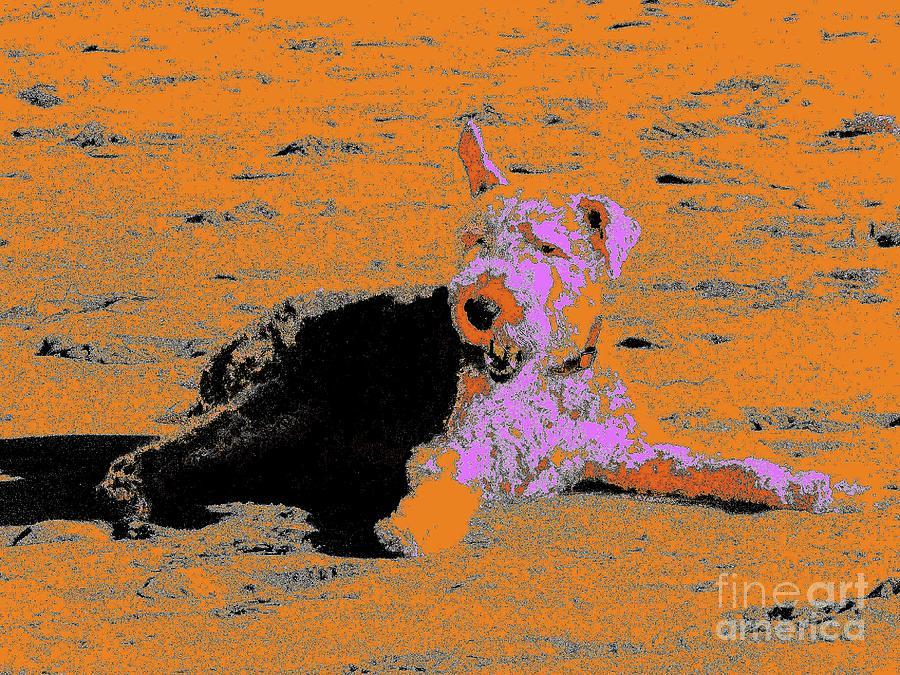 Digital Photography Digital Art - Beach Dog 8 by Nina Kaye