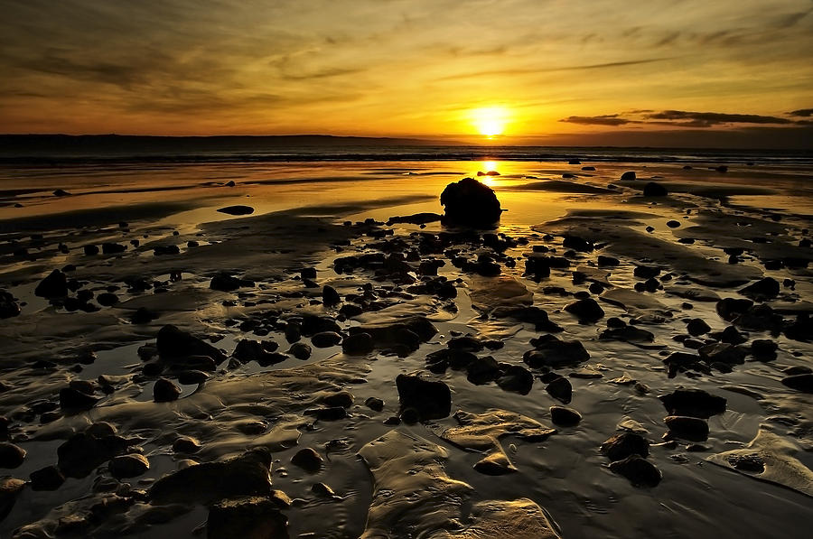 Bay Photograph - Beach Morning Glory by Svetlana Sewell