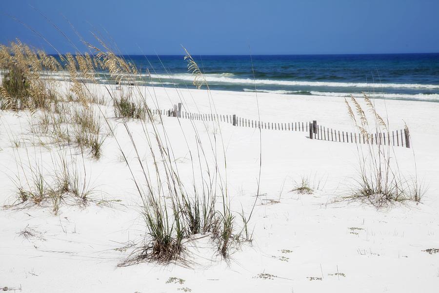 Beach Photograph - Beach No. 5 by Toni Hopper