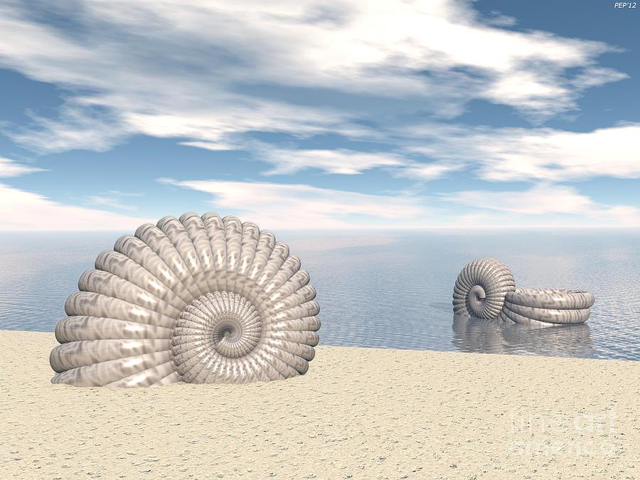 Surreal Digital Art - Beach Of Shells by Phil Perkins