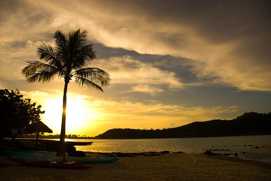 Beach Photograph - Beach Sunset with Bora Bora Palm by Benjamin Clark