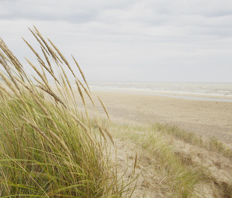 Horizontal Photograph - Beachscape 8 by Ben Richardson