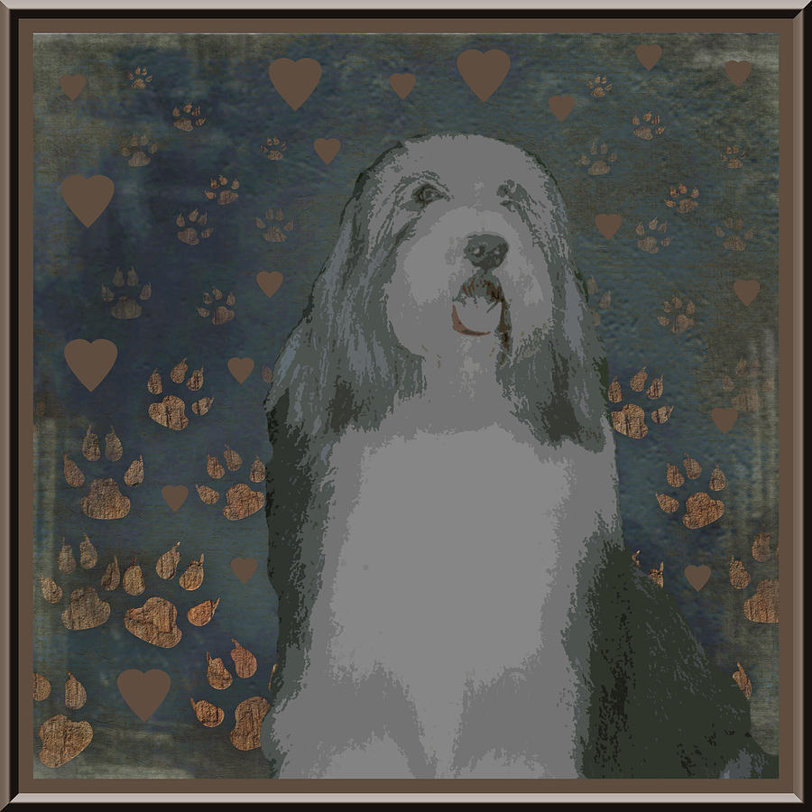 Bearded Collie Photograph - Bearded Collie by One Rude Dawg Orcutt