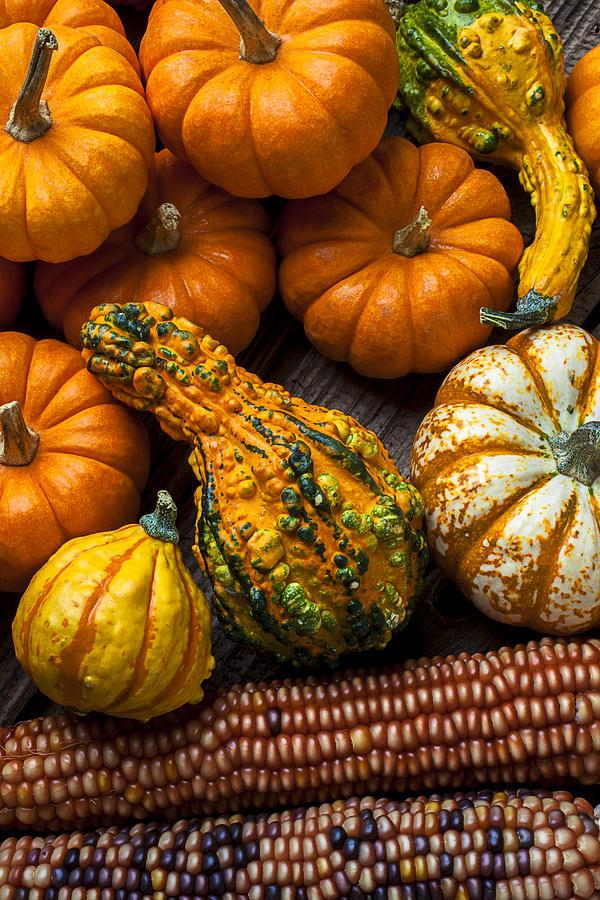 Gourd Photograph - Beautiful Autumn by Garry Gay