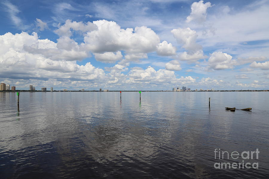 Tampa Photograph - Beautiful Day In Tampa by Carol Groenen