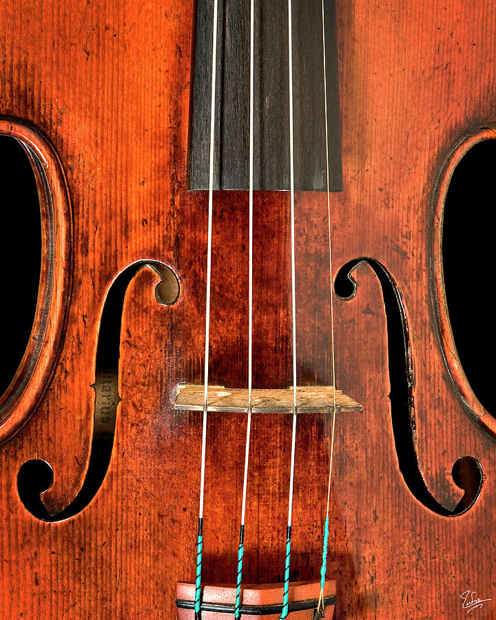 Strad Photograph - Beautiful F Holes by Endre Balogh
