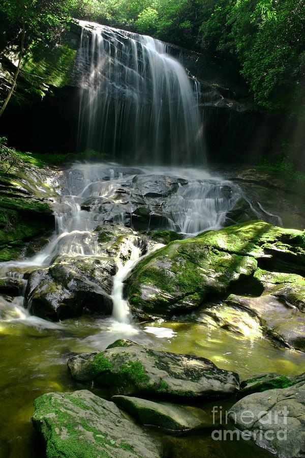 Beautiful Rain Forest Waterfall Photograph By Matt Tilghman