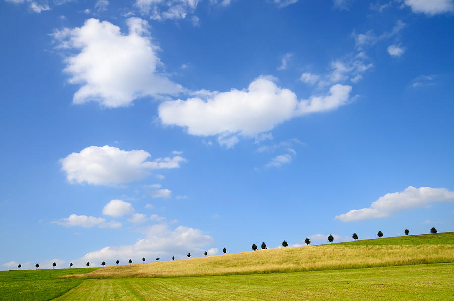 Beautiful Summer Landscape With Blue Sky And Clouds Photograph