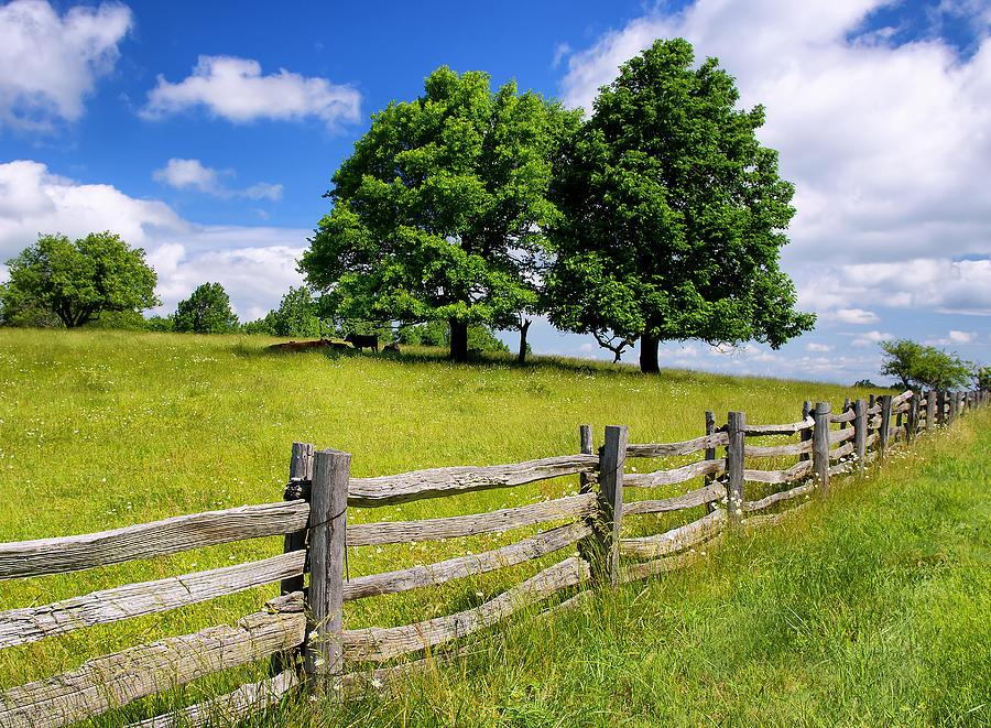 Beautiful Virginia Pasture Photograph by Lori Coleman