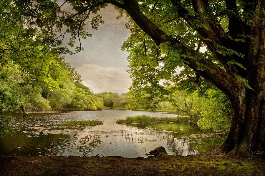 Ireland Photograph - Beauty Of Ireland by Cheryl Davis