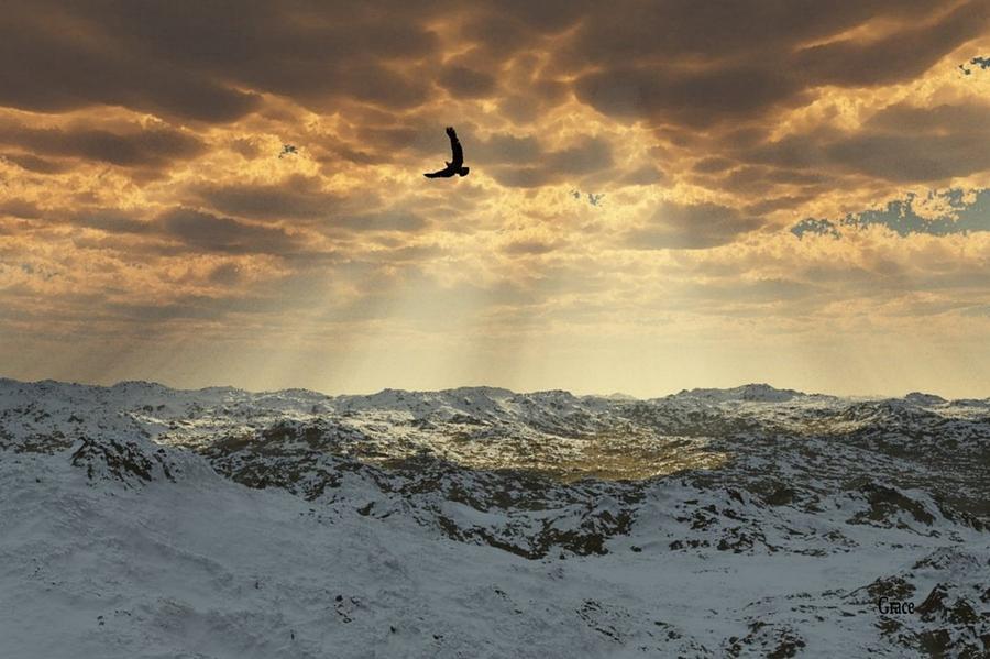 Landscape Digital Art - Beauty Of Winter by Julie Grace