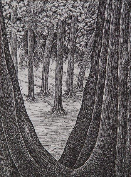 Landscape Drawing - Beauty by Usama Nashed