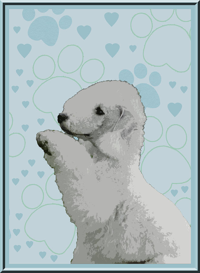Bedlington Terrier Photograph - Bedlington Terrier by One Rude Dawg Orcutt